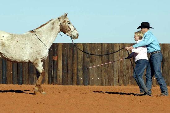 Научете коня да отстъпва назад