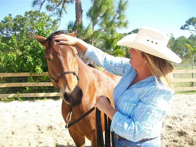 Коригиране на кон, който се страхува от движения около главата