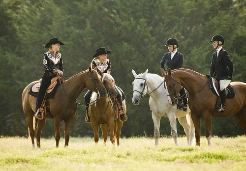 Английската езда (класически стил) срещу Уестърн ездата – Каква е разликата?