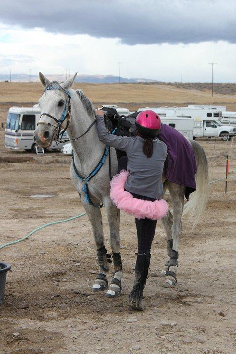 Възсядане и слизане от коня