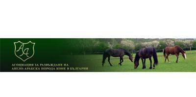 Асоциация за развъждане на Англо-арабска порода коне в България