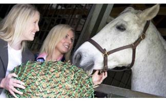 Норми за хранене на конете