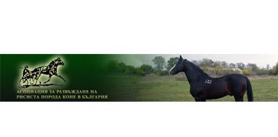Асоциация за развъждане на Рисиста порода коне в България