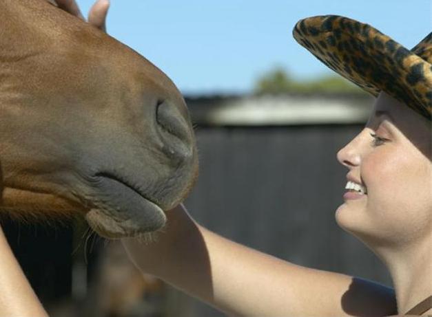 За жените и конете