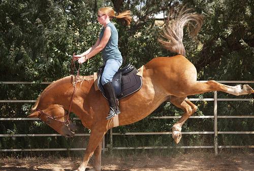 Защо конят рита и как да бъде отучен