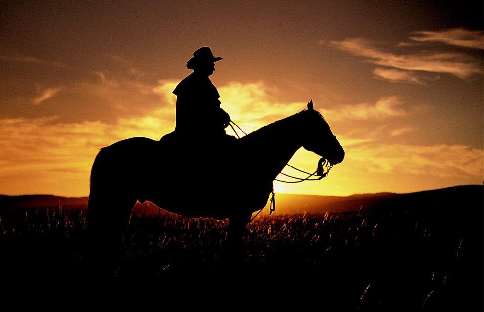 Генерал Тотлебен  клуб по конен спорт