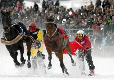 Skijoring: екстремeн зимeн спорт с коне