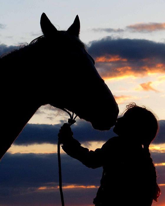 Болести, предавани между конете и хората